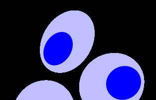 blue cells