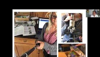 Angela Consani describes teaching microbiology online