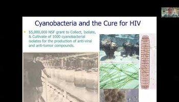 Agal biotechnology
