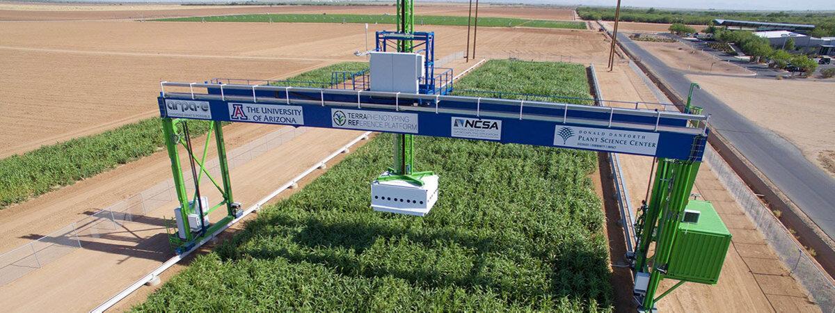 USDA Maricopa Field Station, Terra-Ref Courtesy of Rick Ward