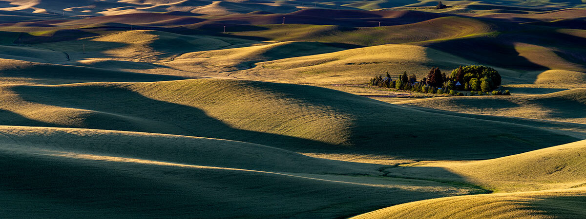 Palouse Sunrise. Image by Todd Smith