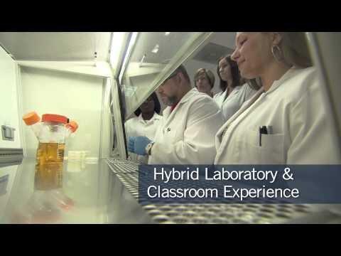 MWCC STEM- Biotech