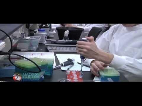Madison College Biotechnology Articulation Agreement