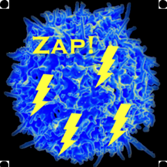 T cell storm