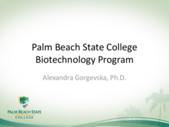 Palm Beach State College Program Summary